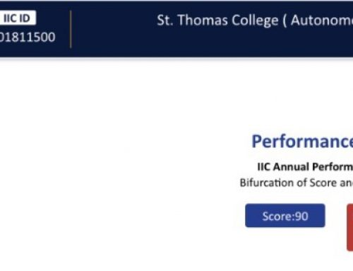 IIC Annual Performance Report